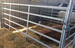 Прегради за коне и крави