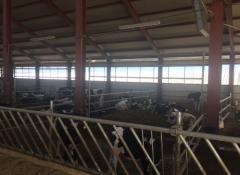 Хранителни решетки за крави - 6М