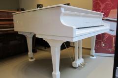 Нов бял роял SAMICK - SIG 48 D