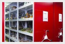 Музейни подвижни стелажни системи