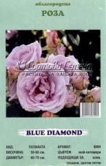 Роза Blue Diamond