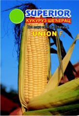 Семена сорт Унион F1