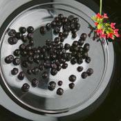 Замразена боровинка