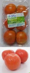 Био домати пресни