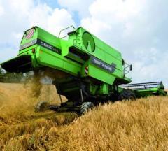 Grain-harvesting combines