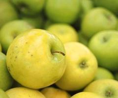 Плодове - пресни , замразени , сушени