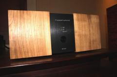 Хибриден аудио усилвател Hypohybrid АВ100