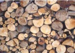 Дървен материал от дъб