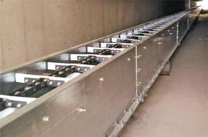 Chain conveyer