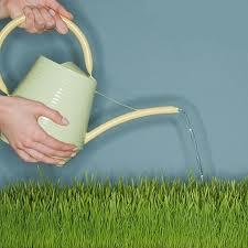 Препарати за растителна защита и семена