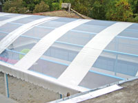 Roofing films