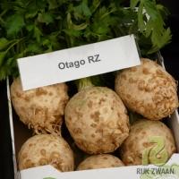 Главеста целина Otago F1 RZ (Отаго F1 РЦ) 10 000