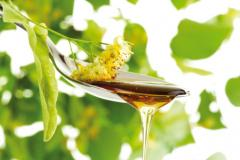 Липов мед и пчелни продукти