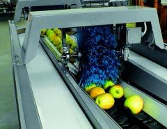 Линия за сортиране и стандартизиране на ябълки
