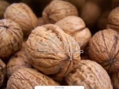Орех с черупка
