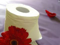 Toilet two-layer paper