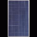 Фотоволтаичен модул CNM240P-60