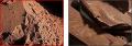 Какао прах 10-12% (натурално)