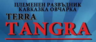 Тера Тангра, ООД, Елин Пелин