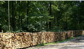 Болкан лес, ЕООД, Хасково