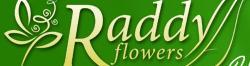 Приказки от цветя, ООД, Бургас