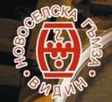 Новоселска Гъмза, АД, Видин