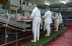 Order Packing of food products into unit dose packages