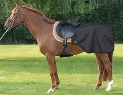 Поръчка Оборудване за езда