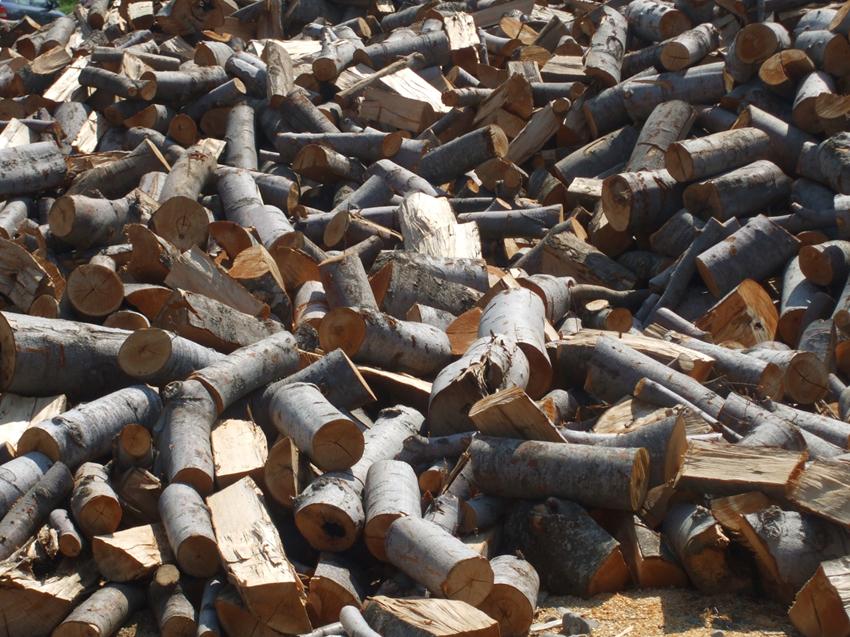 Поръчка Експорт на дърва за огрев БУК