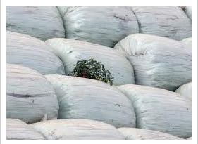 Поръчка Извозване и депониране на строителни и битови отпадъци