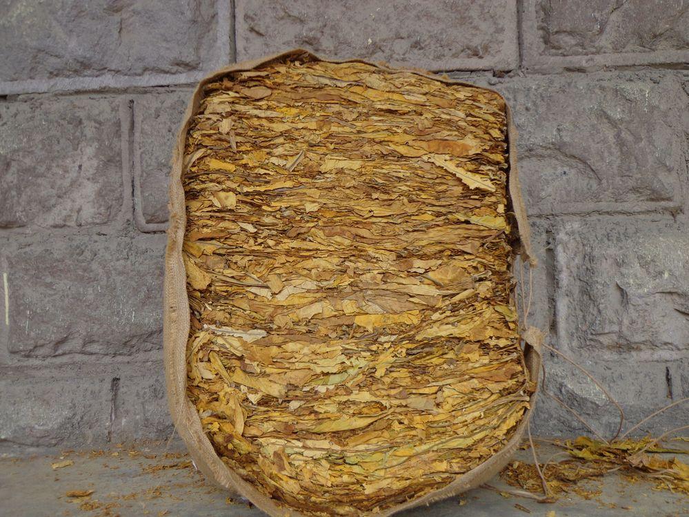 Поръчка Преработка на ориенталски тютюни