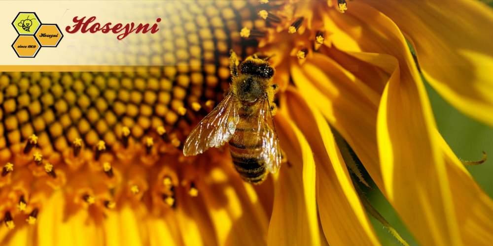 Поръчка Пчеларски инвентар
