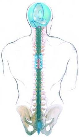 Поръчка Кристор масаж