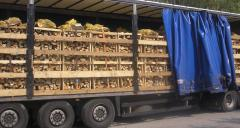 Износ на дърва