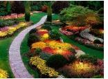 Външно и вътрешно озеленяване на къщи