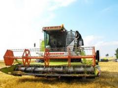 Производството на селскостопанска продукция