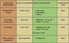Схема на пръскане на рапица, обеззаразяване