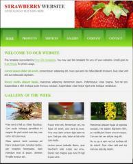 Обновяване на Уеб Сайтове