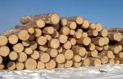 Дървопреработване и изработване на изделия от иглолистен дървен материал