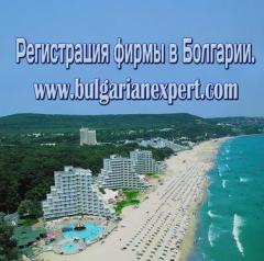 Бухгалтерское и юридическое сопровождение в Болгарии