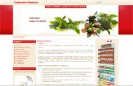 Стандартен уеб сайт на два или три езика
