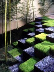 Модерен ландшафтен дизайн