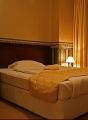 Стая единична